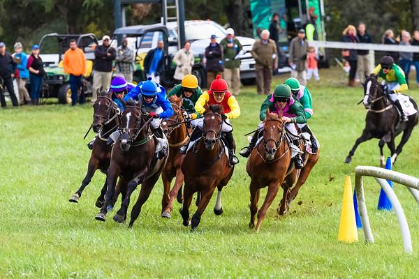 VA Fall Races D5-856