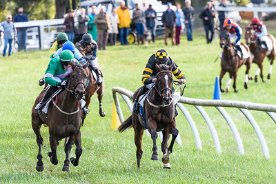 VA Fall Races D5-923