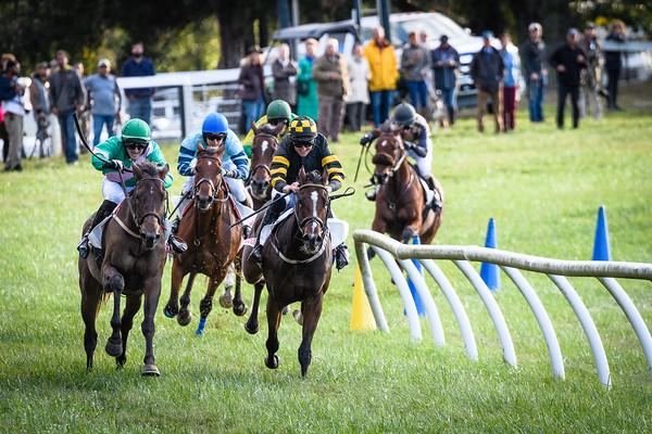 VA Fall Races D5-921