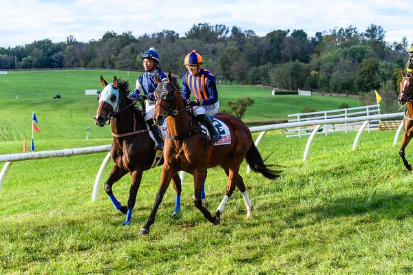 VA Fall Races D5-950