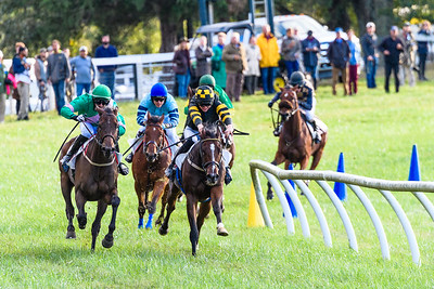 VA Fall Races D5-920