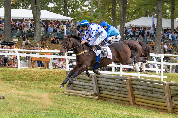 Fall Races D5-544