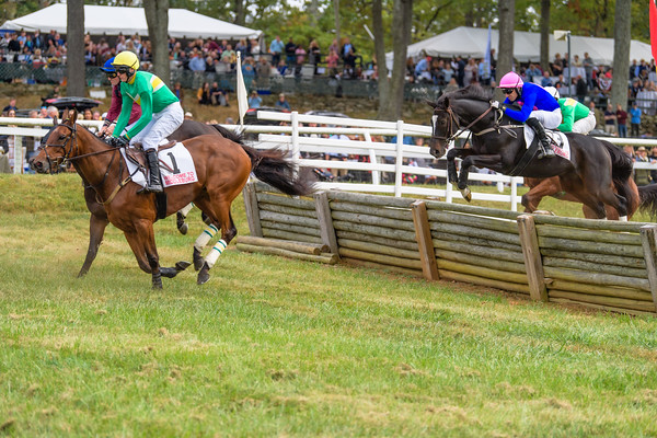 Fall Races D5-551