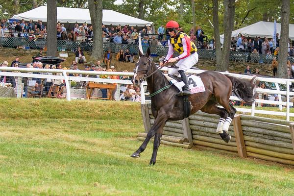 Fall Races D5-529