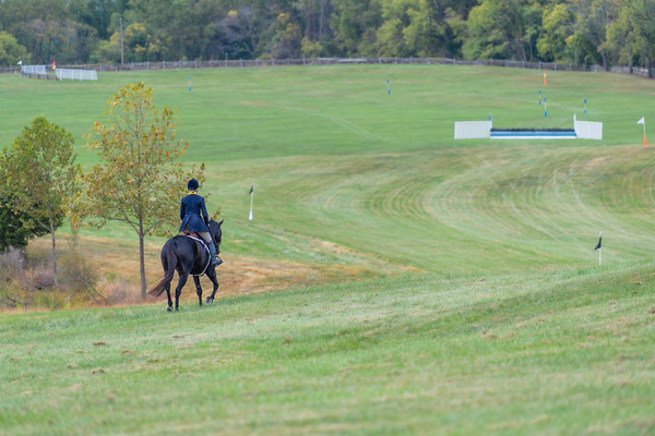 Fall Races D5-522