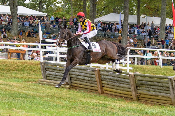 Fall Races D5-528