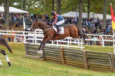 Fall Races D5-533