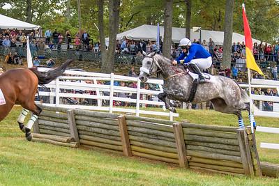 Fall Races D5-536