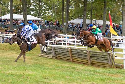 Fall Races D5-546