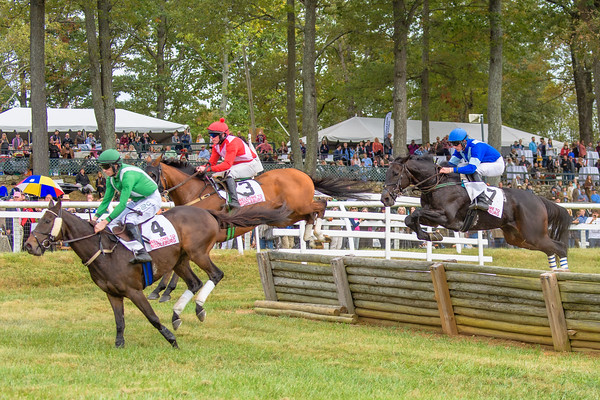 Fall Races D5-706