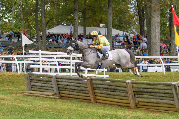 Fall Races D5-681