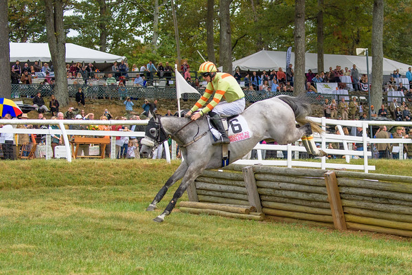Fall Races D5-683
