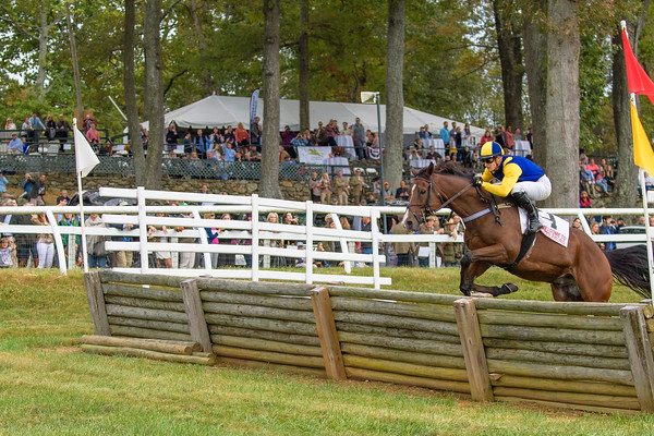Fall Races D5-688