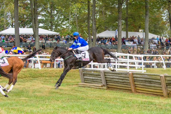 Fall Races D5-708