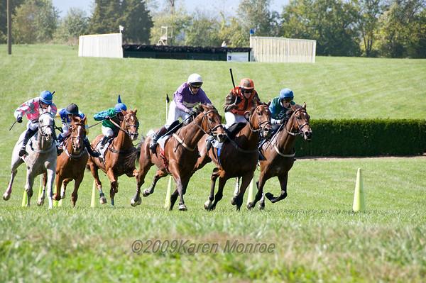 The Bon Nouvel, Hurdle Race 2 miles & one furlong over national fences