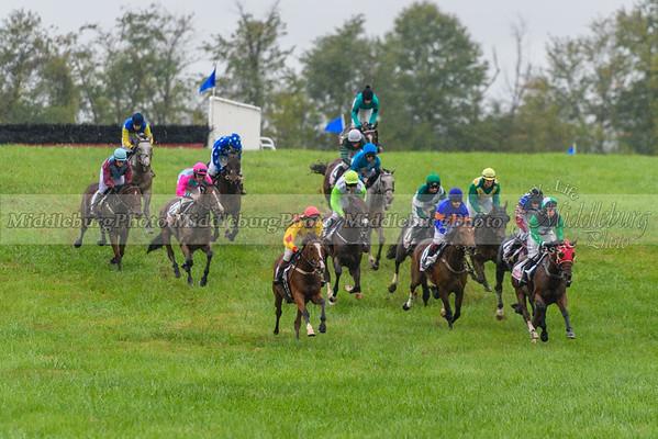 Fall Races D500-14