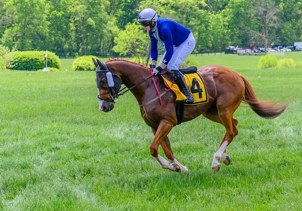 Virginia Gold cup Races-103