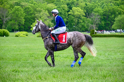 Virginia Gold Cup 2019km-155