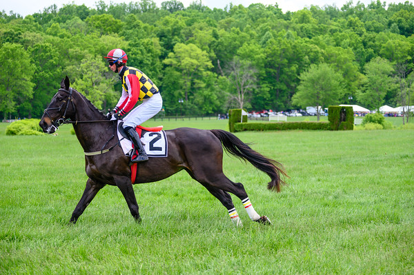 Virginia Gold Cup 2019km-157
