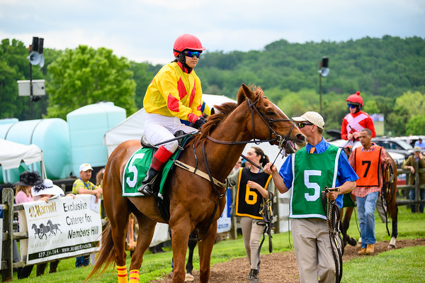 Virginia Gold Cup 2019km-145