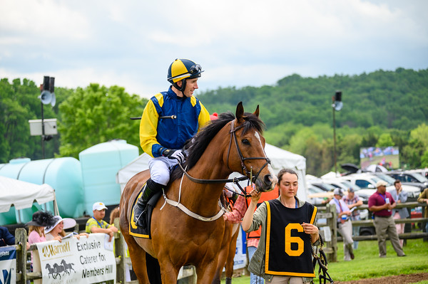 Virginia Gold Cup 2019km-148