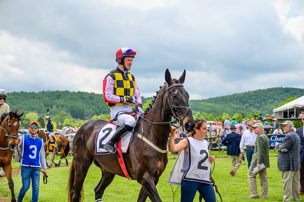 Virginia Gold Cup 2019km-140