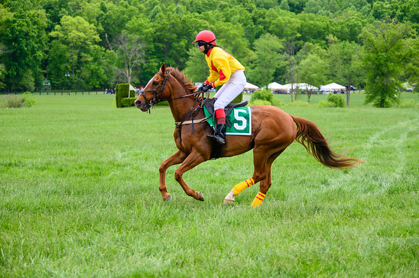 Virginia Gold Cup 2019km-163
