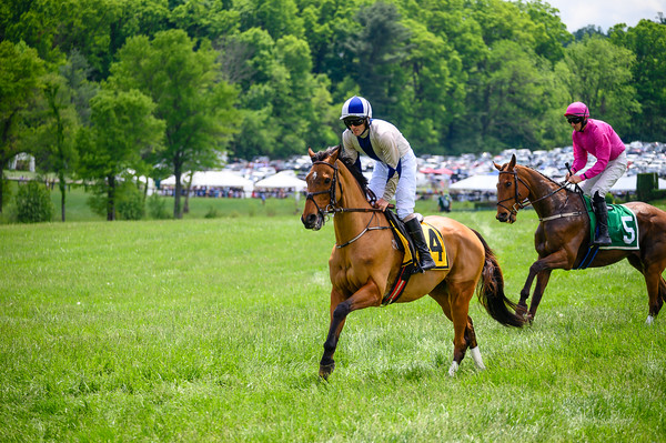 Virginia Gold Cup 2019km-347