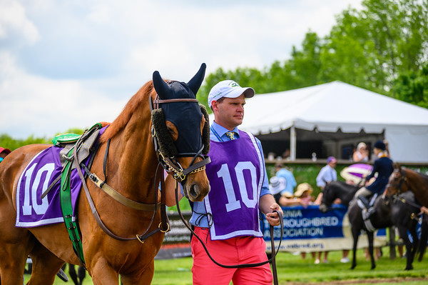 Virginia Gold Cup 2019km-307