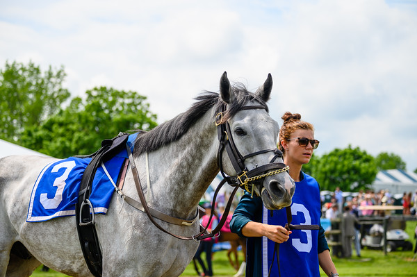 Virginia Gold Cup 2019km-320
