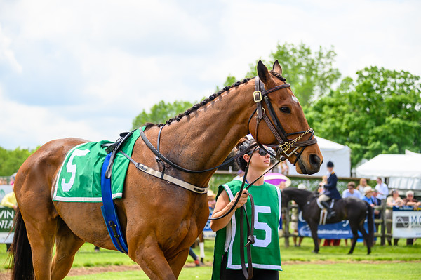 Virginia Gold Cup 2019km-324