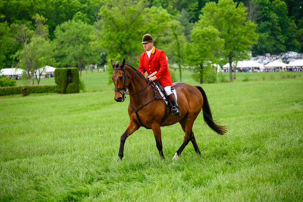 Virginia Gold Cup 2019km-509