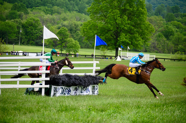 Virginia Gold Cup 2019km-715