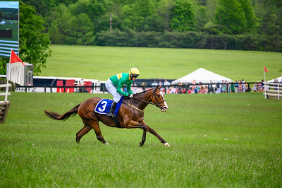 Virginia Gold Cup 2019km-700