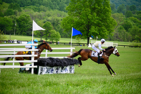 Virginia Gold Cup 2019km-713