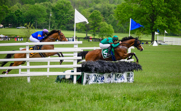 Virginia Gold Cup 2019km-705