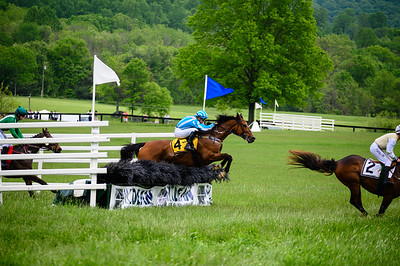 Virginia Gold Cup 2019km-714