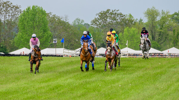 Virginia Gold Cup 2019km-791