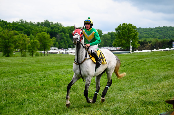 Virginia Gold Cup 2019km-763