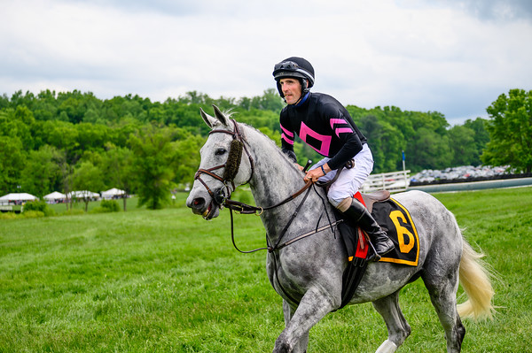 Virginia Gold Cup 2019km-770