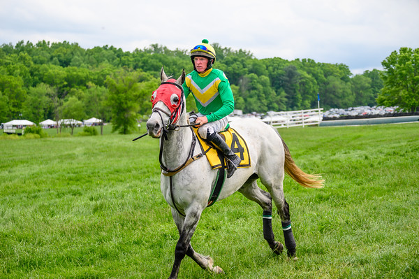 Virginia Gold Cup 2019km-765
