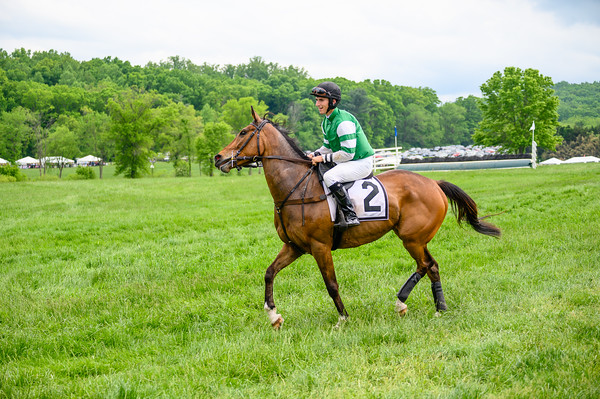 Virginia Gold Cup 2019km-753