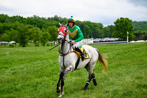 Virginia Gold Cup 2019km-764
