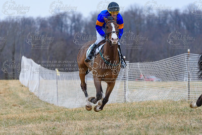 Warrenton Hunt Point to Point km-24