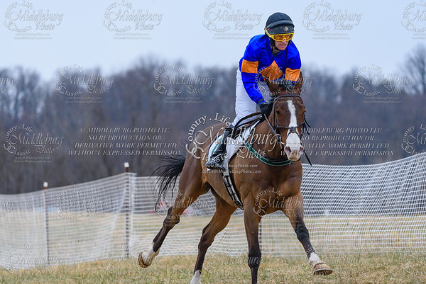 Warrenton Hunt Point to Point km-26