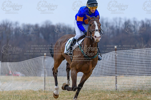 Warrenton Hunt Point to Point km-27