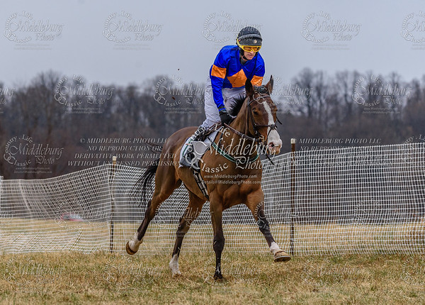 Warrenton Hunt Point to Point km-7