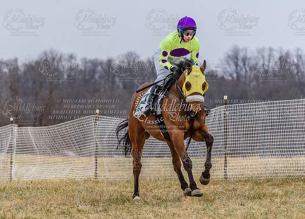 Warrenton Hunt Point to Point km-4