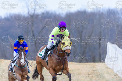 Warrenton Hunt Point to Point km-20