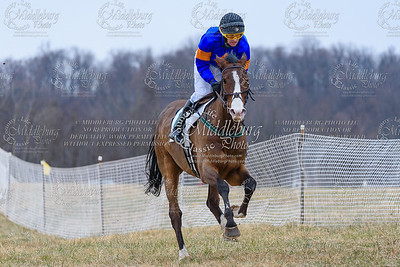 Warrenton Hunt Point to Point km-25